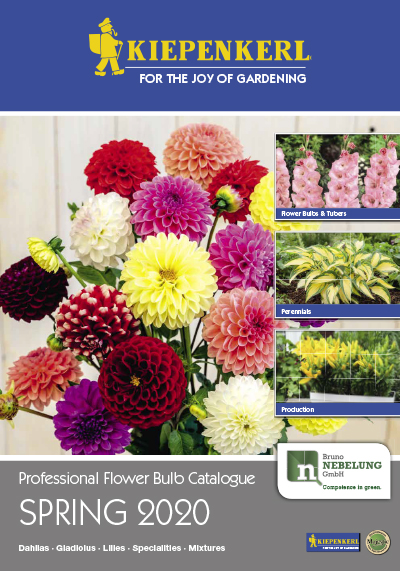Professional Flower Bulb Catalogue Spring 2020